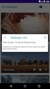 Daily Wallpapers Pro APK (PAID) Download Latest Version 4