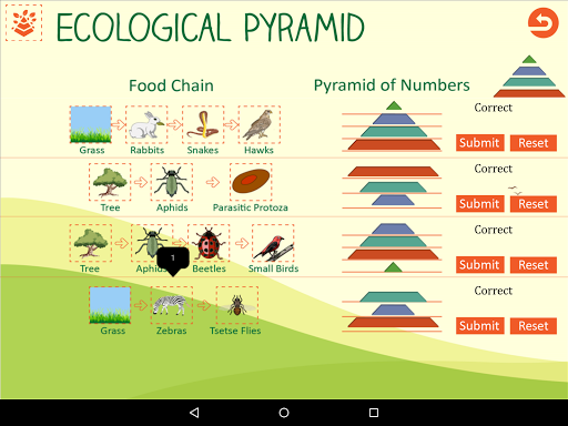 Ecological Pyramid-Food Chain For PC Windows (7, 8, 10, 10X) & Mac Computer Image Number- 12