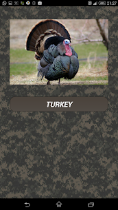 Turkey hunting calls  For Pc In 2021 – Windows 10/8/7 And Mac – Free Download 1