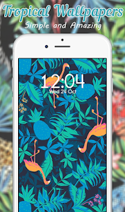 Tropical Wallpaper  Apps For Pc, Windows 7/8/10 And Mac Os – Free Download 2