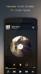 Equalizer + Pro (Music Player) 2.19.02 Apk 5