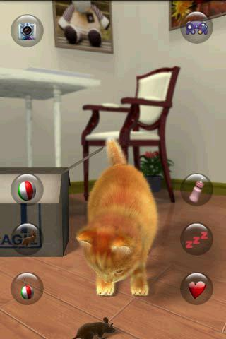 Talking Lovely Cat  screenshots 3