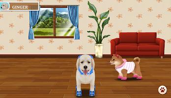 My Dog My Style
