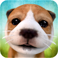 Dog Simulator APK