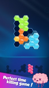 Block! Hexa Puzzle™ MOD APK (Instant Win) Download 8