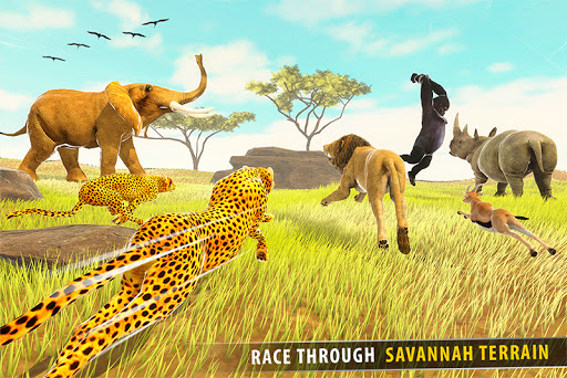 Savanna Animal Racing 3D: Wild Animal Games 1.0 screenshots 2