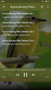 Suara Pikat Burung Pleci Ampuh 1.0 Mod APK Updated Android 3