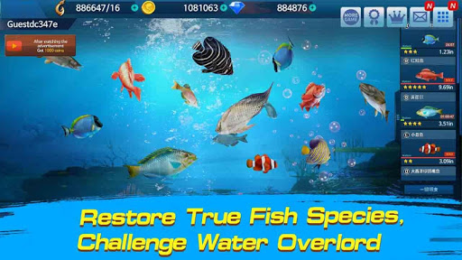 Fishing Championship 1.2.8 Screenshots 7