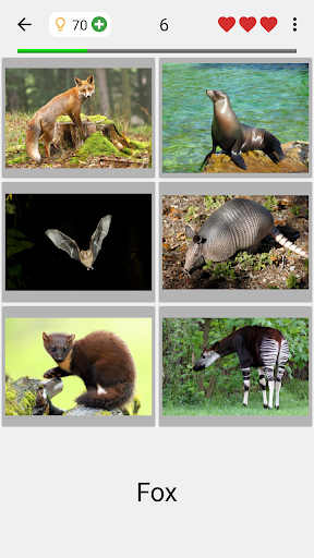Animals Quiz - Learn All Mammals, Birds and more! 3.0.0 Screenshots 2