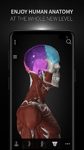 Anatomyka - 3D Human Anatomy Atlas 2.1.5 Screenshots 7