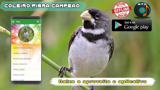 Coleiro Fibra Campeao 1.2 screenshots 3