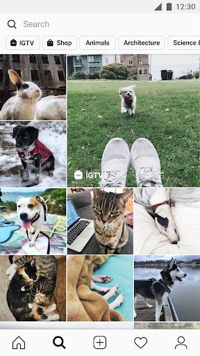 Instagram 175.1.0.25.119 screenshots 4