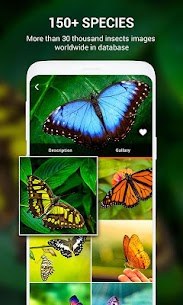 Insect identifier App by Photo, Camera Mod Apk (Subscription Activated) 8
