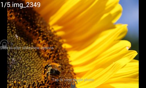 digital photo frame premium screenshot 2