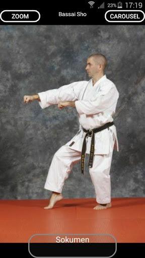 karate shito-ryu 8 screenshot 3