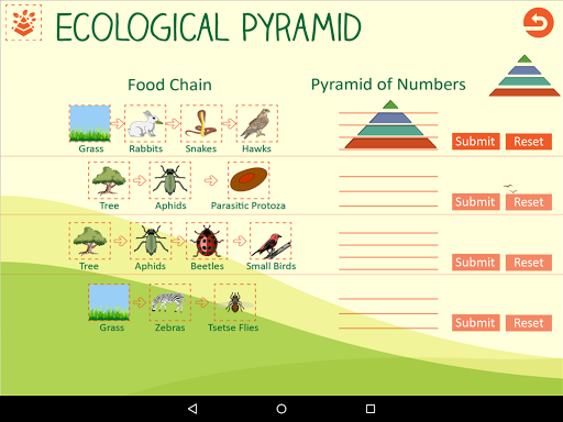 Ecological Pyramid-Food Chain For PC Windows (7, 8, 10, 10X) & Mac Computer Image Number- 11