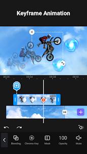 VivaCut Pro Video Editor 3