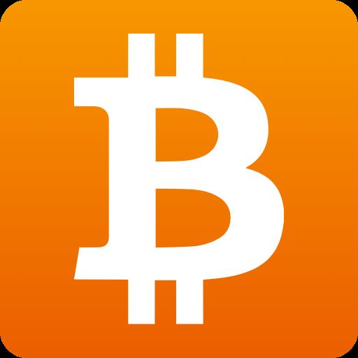 bitcoin explorer)
