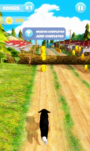 Dog Run 1.1.9 screenshots 6