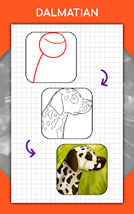 How to draw animals. Step by step drawing lessons 1.5.3 Screenshots 21