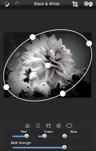 Dramatic Black & White ss1