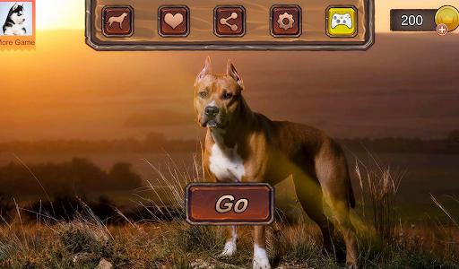 Pitbull Dog Simulator 1.0.3 screenshots 9