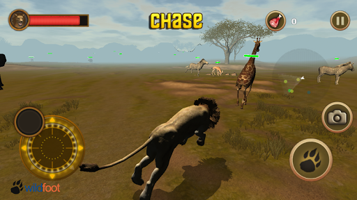 lion chase screenshot 2