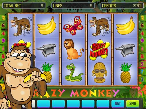 Crazy Monkey Deluxe 8.3 Screenshots 1