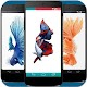 Betta Fish Phone Wallpaper para PC Windows