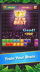 Block Puzzle Gem  Jewel Blast Game Apk Download NEW 2021 3