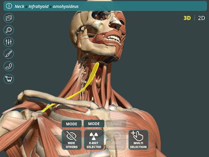 Visual Anatomy 3D | Human 1.2 Screenshots 15