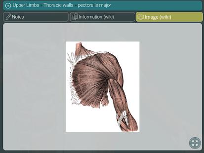 Visual Anatomy 3D | Human 1.2 Screenshots 21