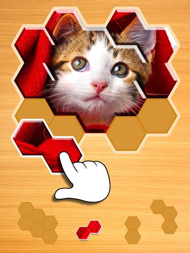 Jigsaw Puzzles Hexa ud83eudde9ud83dudd25ud83cudfaf 2.2.9 screenshots 9