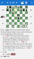 Encyclopedia Chess Combinations Vol. 2 Informant