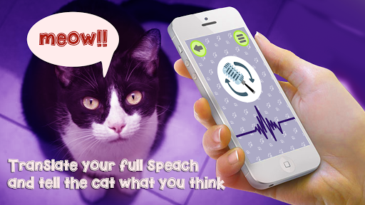 Cat Language Translator Simulator - Talk to Pet apktreat screenshots 1