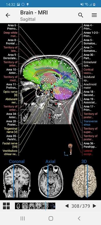 e-Anatomy  poster 2