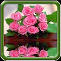 Beautiful Pink Flowers APK