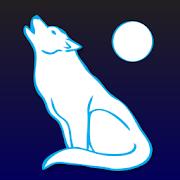 Animal Totem & Spirit Guide  Icon