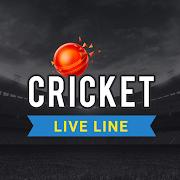 Vintage Cricket Fast Live Line - IPL Live Score