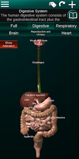 Internal Organs in 3D (Anatomy) 2.5 Screenshots 4