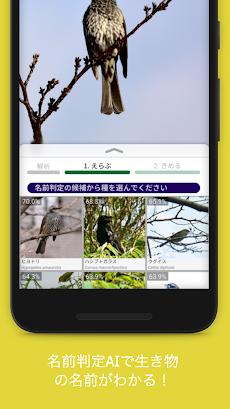 Biome (バイオーム) | いきものコレクションアプリのおすすめ画像2