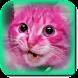 Cats Ringtone 2021