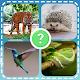 Animais quiz zoo: peixes aves mamíferos insetos para PC Windows