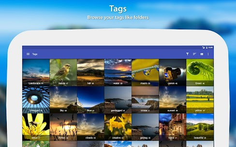 F-Stop Gallery Pro Mod Apk (Premium Unlocked) 8