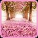 自然の壁紙 - 風景の背景 - Androidアプリ