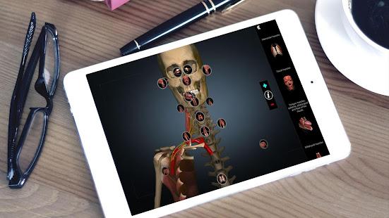Anatomy Learning - 3D Anatomy Atlas 2.1.329 Screenshots 6