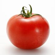 生産者と料理人をつなぐ情報アプリ/chef's clip
