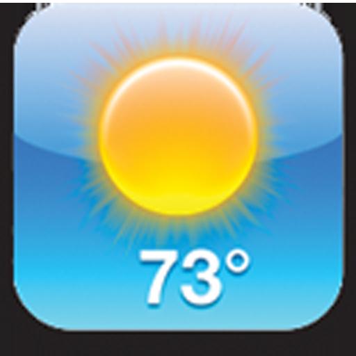 Temperature Sensor Thermometer