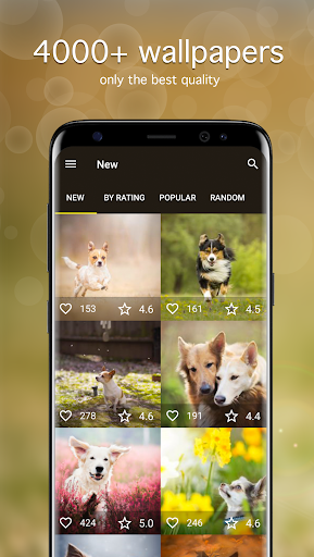 Dog Wallpapers & Puppy Backgrounds 5.2.0 screenshots 1