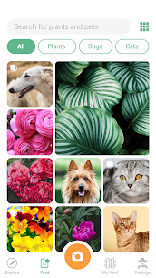 NatureID Mod Apk: Identify plants, flowers, trees & leaves (Paid Features Unlocked) 6